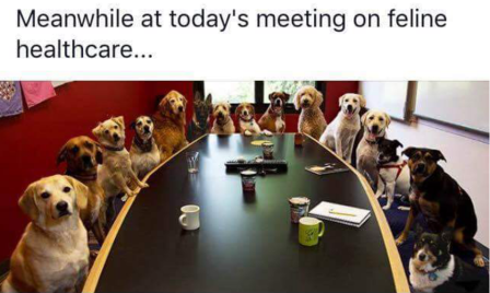 Meanwhile at todays meeting