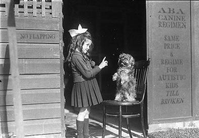 ABA canine regimen